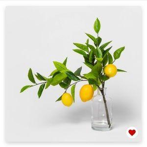 NWOT 🎯 Lemon branch in vase